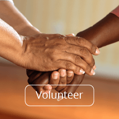 Volunteer Opportunities at Tree of Life